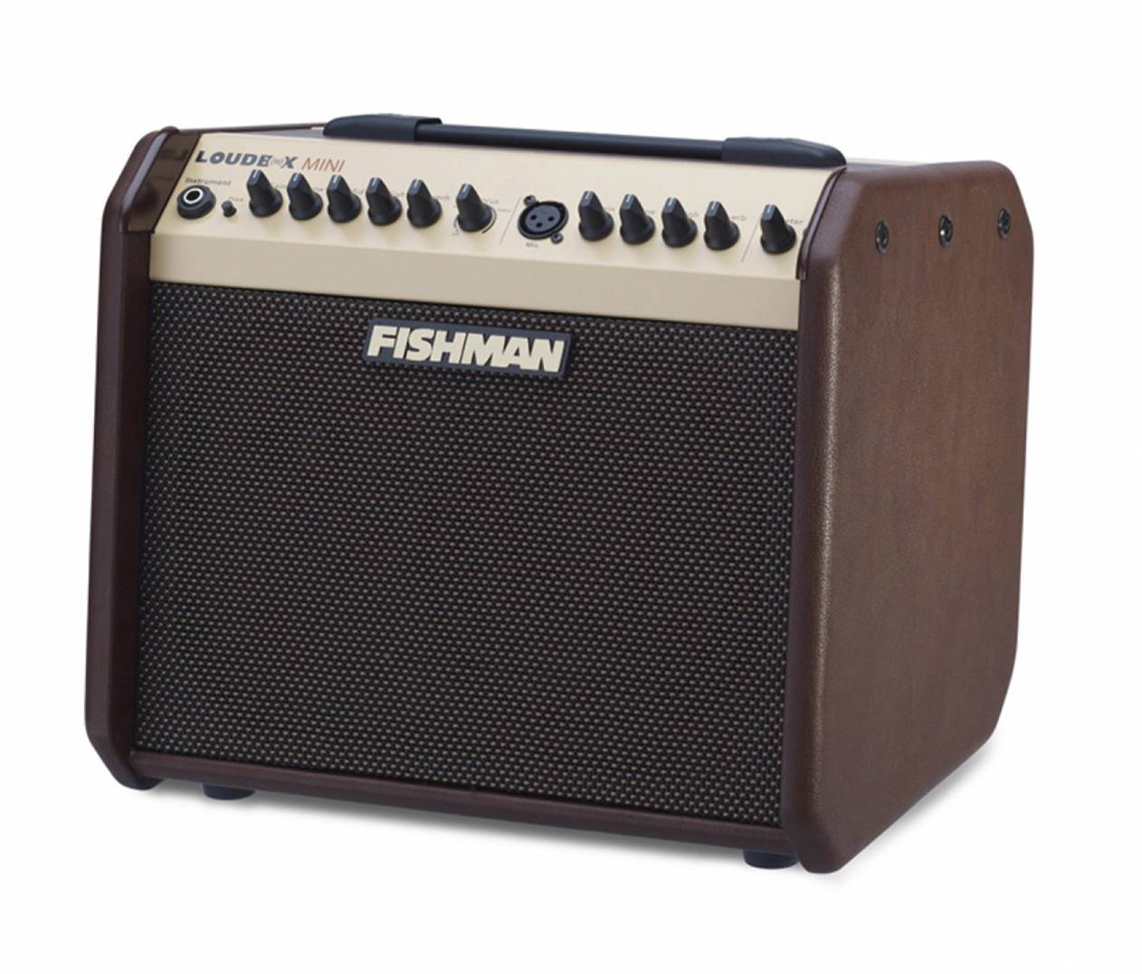 Fishman Loudbox 60W Guitar Amp
