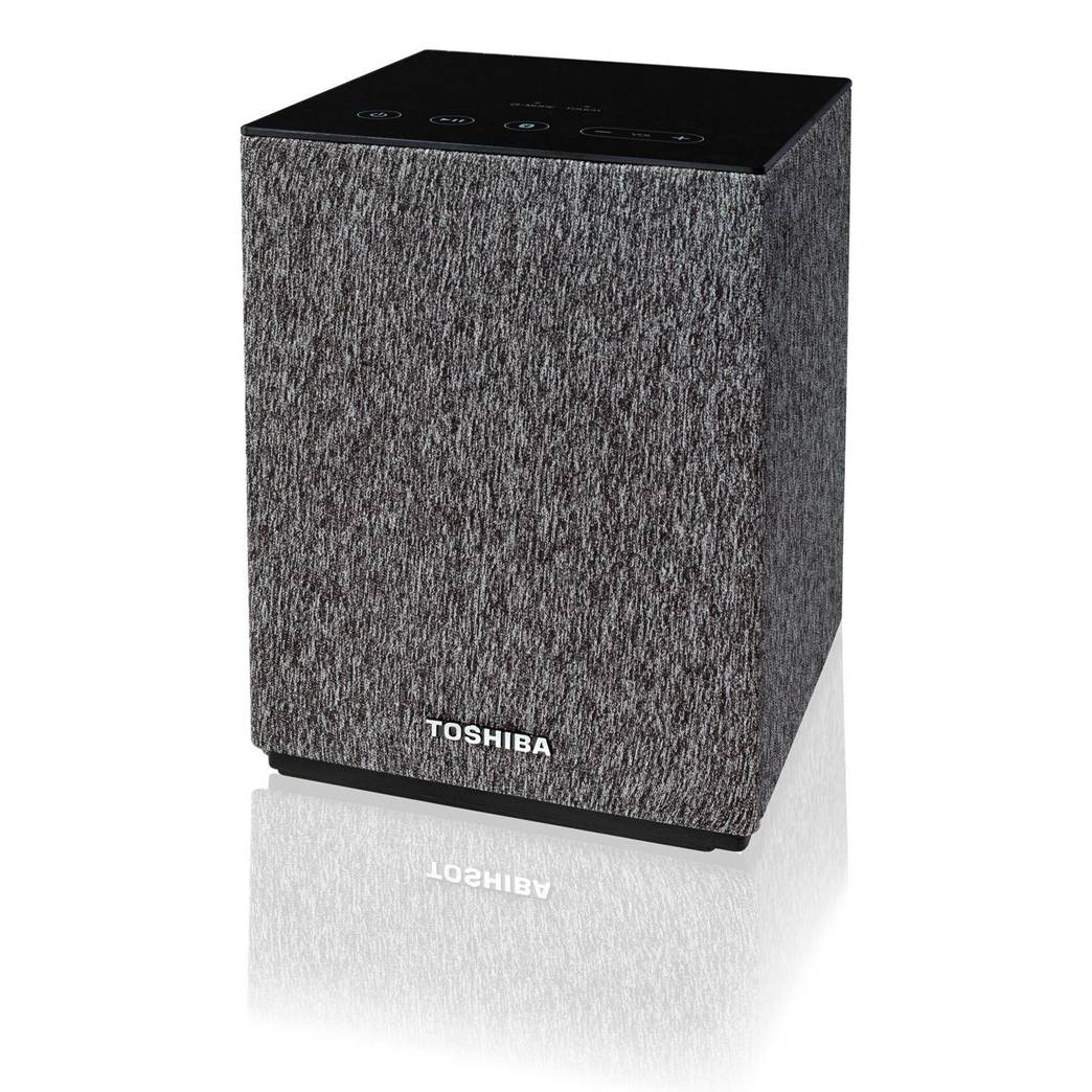 Toshiba TY-GC1000 Chromecast Speaker